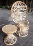 Mona Peacock Rattan Chair
